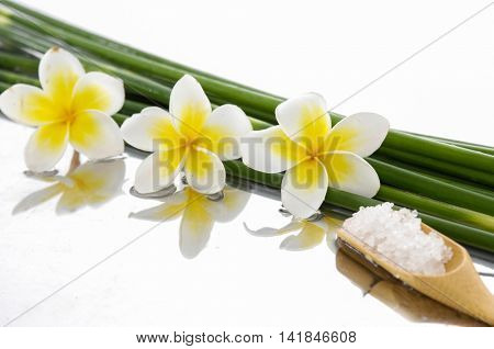 frangipani with bamboo grove, salt in spoon