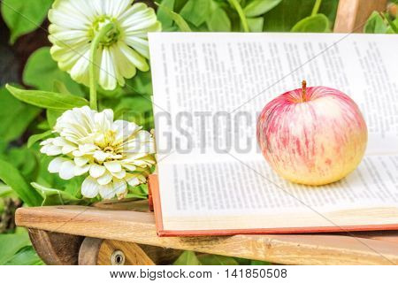 Apple and open book on wooden garden chair among the flowering zinnias in the garden on a summer day close-up. Selective focus