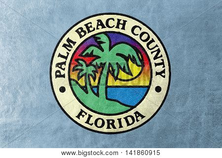 Flag Of Palm Beach County, Florida, Usa, Painted On Leather Texture