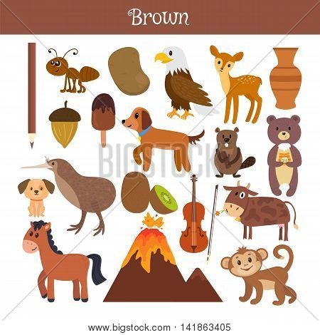 Brown. Learn The Color. Education Set. Illustration Of Primary Colors