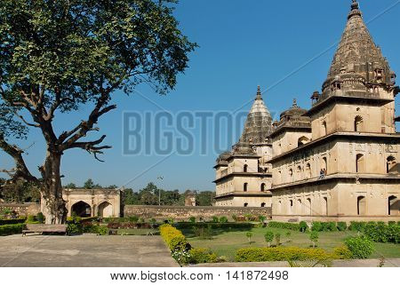 Park around buildings with stone domes in indian Orchha. Cenotaphs was built in 17th century for a long memory about kings of Orchha city.