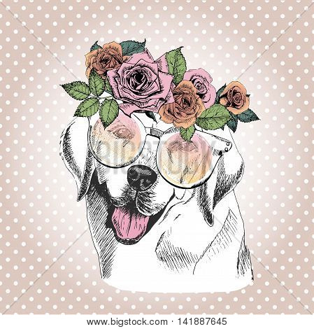Vecotr portrait of dog wearing the floral wreath and sunglasses. Hand drawn vintage trendy illustration. Labrador retriever breed. Isolated on polka dot and rose gold background.