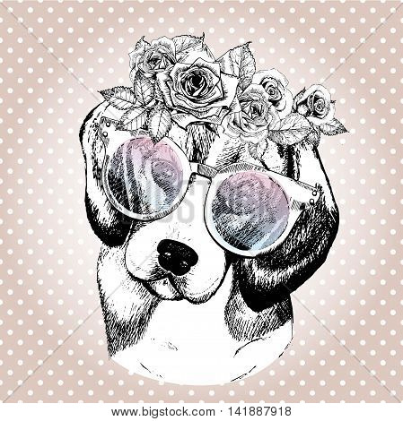 Vecotr portrait of dog wearing the floral wreath and sunglasses. Hand drawn vintage trendy illustration. Beggle breed. Isolated on polka dot and rose gold background.
