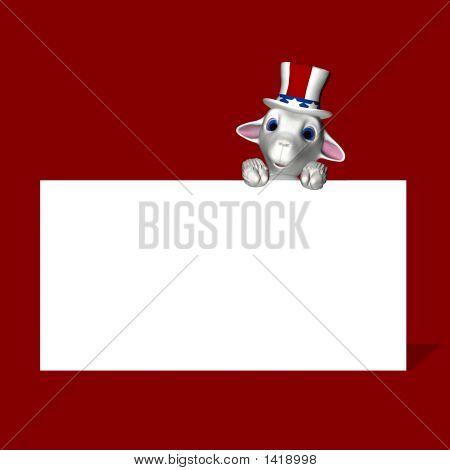 American Sheep - Republican