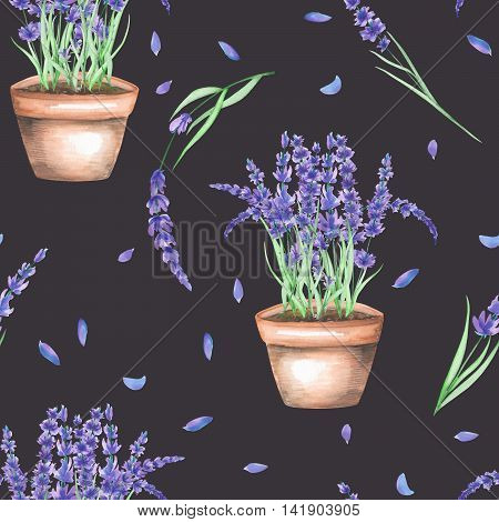 A seamless pattern with the lavender flowers in a pot, isolated hand drawn in a watercolor on a dark background