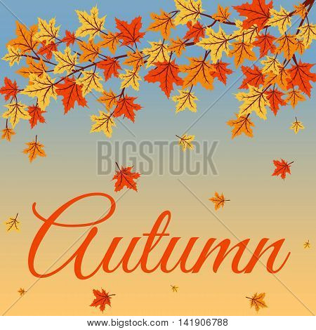 Autumn background with tree branches and orange leaves