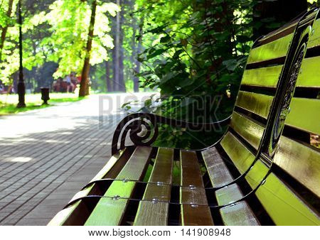 Bench in the park on the background of the track.