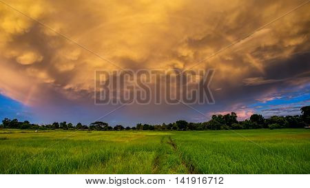 Beautiful stormy sky over fields in Thailand. Summer landscape with cloudy blue sky. with Rainbow