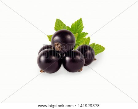 black currant isolated on white background. Ripe and tasty currant. Blackcurrant branch.