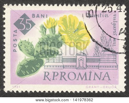 MOSCOW RUSSIA - CIRCA MAY 2016: a post stamp printed in ROMANIA shows Opuntla vulgaris flower the series