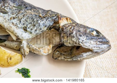 Detail photo of tasty grilled trout with potato. Food theme. International cuisine.