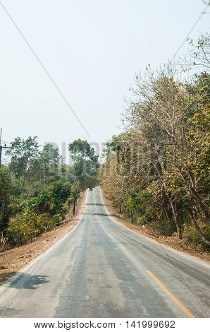 road between nature in local of Thailand