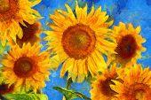 Sunflowers.Van Gogh style imitation. Digital imitation of post impressionism oil painting. poster