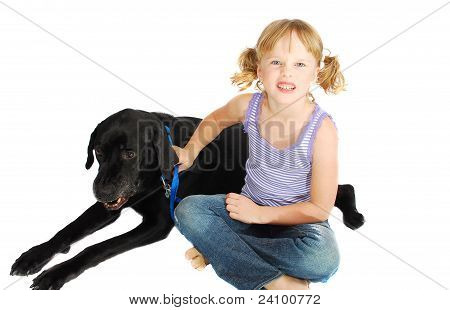 Little unhappy girl training her aggressive dog big black Labrador. Isolated on the white. poster
