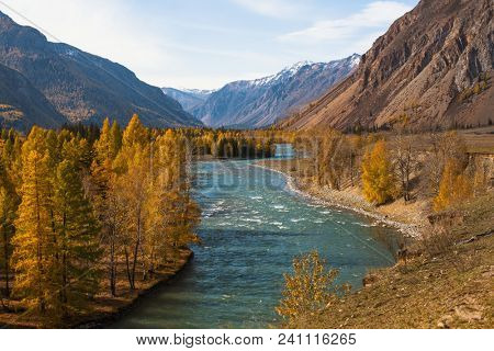 View of forest and river in the mountain North-Chuya ridge of Altai Republic, Russia.