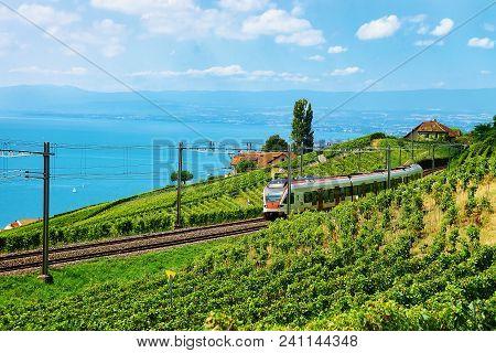 Lavaux, Switzerland - August 30, 2016: Running Train At The Railroad On Lavaux Vineyard Terraces Hik