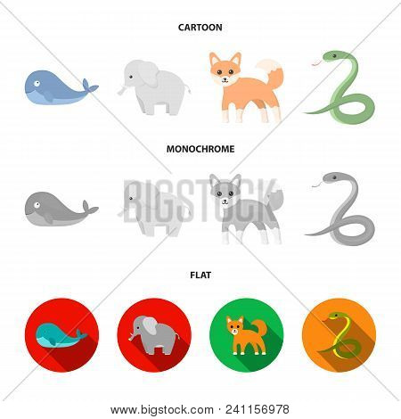 Whale, Elephant, Snake, Fox.animal Set Collection Icons In Cartoon, Flat, Monochrome Style Vector Sy