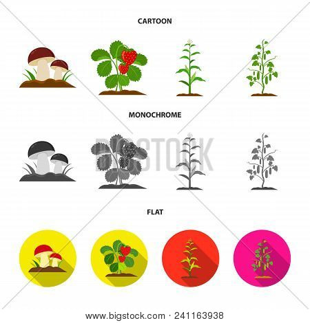 Mushrooms, Strawberries, Corn, Cucumber.plant Set Collection Icons In Cartoon, Flat, Monochrome Styl