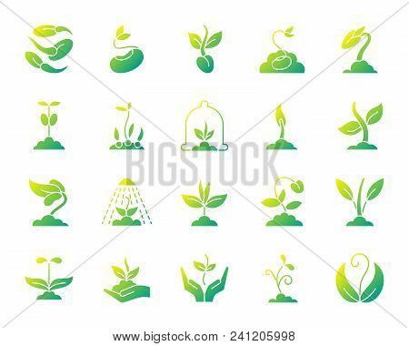 Sprout Silhouette Icons Set. Isolated On White Web Sign Kit Of Seeds. Plant Pictogram Collection Inc