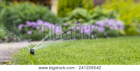 Automatic Sprinkler System Watering The Lawn On A Background Of Green Grass, Close-up