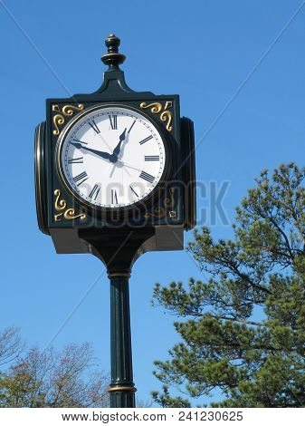 Thoroughfare Clock Displaying Roman Numerals With Tree Branches And Clear Blue Sky Surroundings