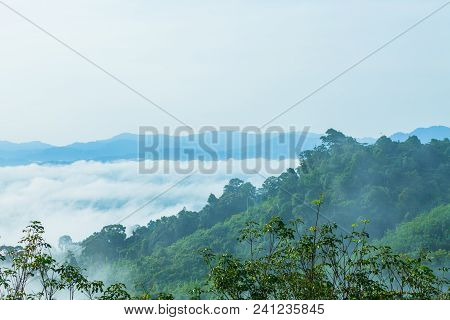 slow floating fog blowing cover on the top of mountain look like as a sea of mist. In the morning th