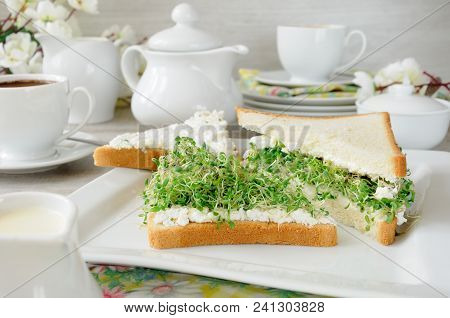 A Sandwich Of Tender, Juicy Sprouted Alfalfa Sprouts With Soft Ricotta And A Cup Of Coffee Or Tea, W