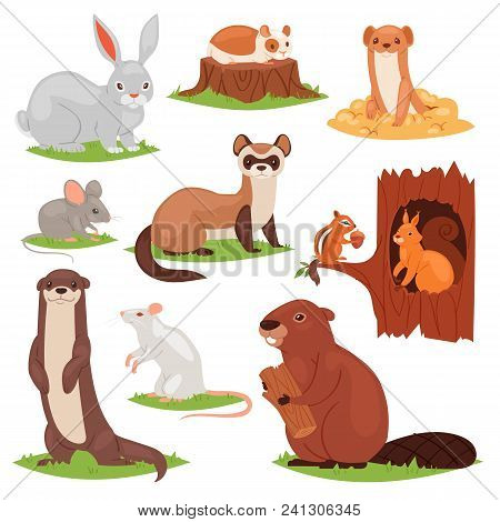 Forest Animals Vector Cartoon Animalistic Characters Squirrel In Hollow And Wild Beaver Or Bunny Har