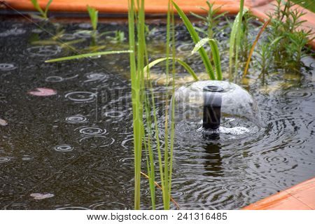 garden pond with turbulent water surface during a heavy rain poster