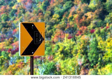 Black and yellow sign with foliage in background