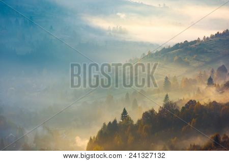 Forested Hills In Rising Autumn Fog. Amazing Scenery In Carpathian Mountains. Beautiful Nature Backg