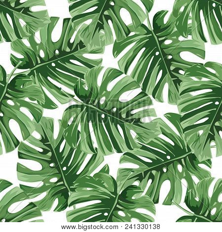 Summer Background. Tropical Palm Leaves, Jungle Leaves Seamless Vector Floral Pattern.