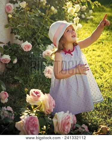 Happy Kid Having Fun. Girl In Hat Pointing Finger In Summer Garden. Child Standing At Blossoming Ros