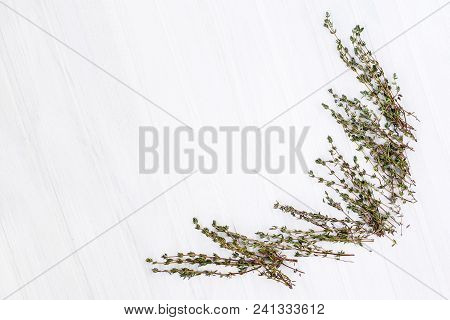Bunch Of Fresh Thyme On A White Background