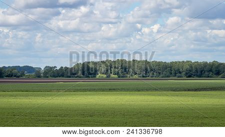 Summer Countryside Fields. Distant Fields Landscape. Summer Countryside Fields.
