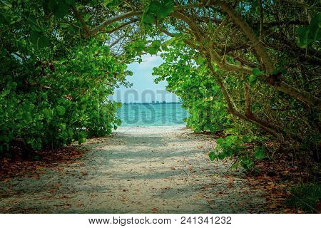 Scenic View Looking Through A Tropical Forest At The Aqua Blue Ocean And White Sandy Beach On A Sunn