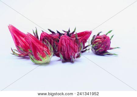 Isolate Of Rosella Or Hibiscus Or Kharkade Or Malvaceae Or Sorrel Seeds