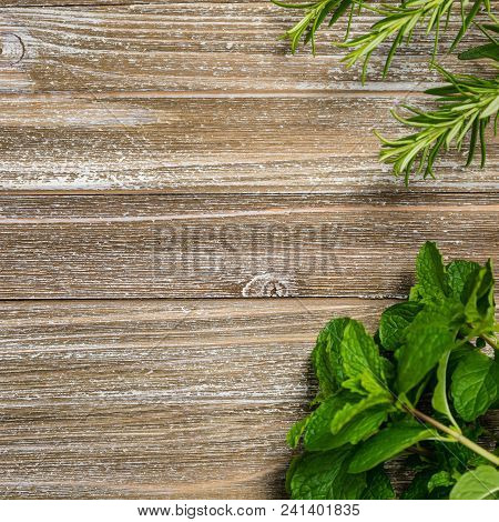 Fresh Garden Herbs On Wooden Table. Top View With Copy Space. Selective Focus On The Wooden Table.