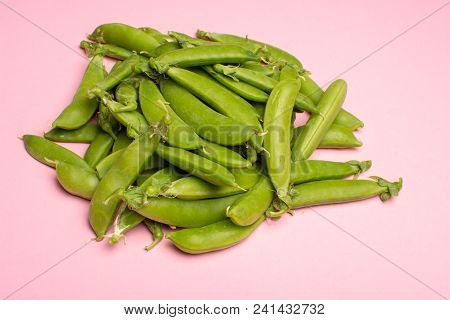 Fresh Green Ripe Sugar Snaps, Sweet Peas Copy Space Close Up On Light Pink Background