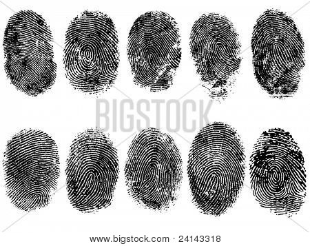 10 Black and White Vector Fingerprints - Very accurately scanned and traced ( Vector is transparent so it can be overlaid on other images, vectors etc.)