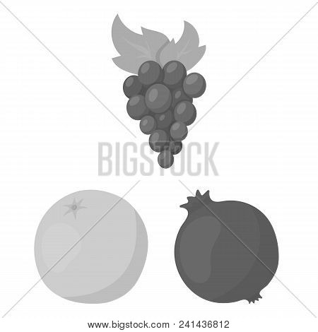 Different Fruits Monochrome Icons In Set Collection For Design. Fruits And Vitamins Vector Symbol St