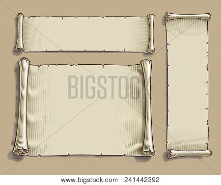 Set Of Three Vector Engraved Illustrations Of Blank Scrolls. Each Scroll On Separate Layer, Lines, E