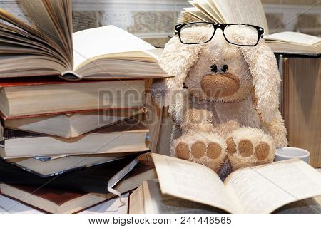 A Soft Toy Hare With Glasses Sits Amidst A Pile Of Open Books With A Small Cup.