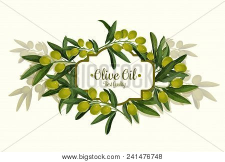 Olive Oil Best Quality Wreath Sketch Poster For Organic Natural Product. Vector Design Of Green Oliv