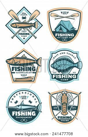 Fishing Creative Icons With Swordfish And Salmon. Vector Badges For Tournament Or Tours. Vintage Emb