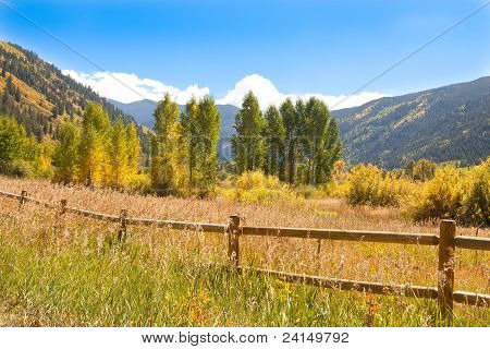Autumn In The Valley Of Colorado