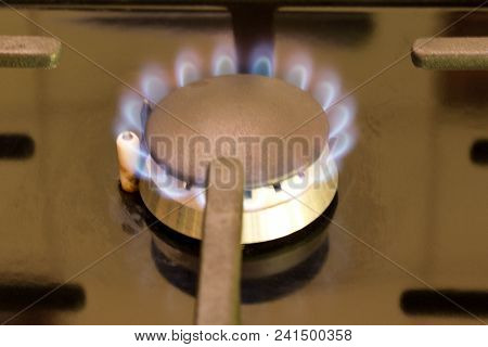 Burning Gas Burner On The Gas Stove. Close Up.
