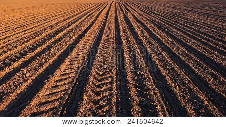 Rows Of Soil Before Planting. Furrows Row Pattern In A Plowed Field Prepared For Planting Crops In S