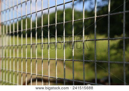 Metal Mesh Fencing / Metal Mesh For Garden