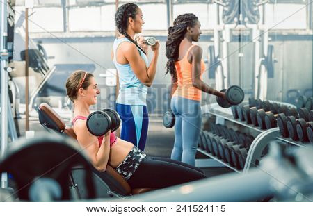 Side view of a beautiful fit woman exercising bicep curls with heavy dumbbells while sitting down next to other determined women at the gym